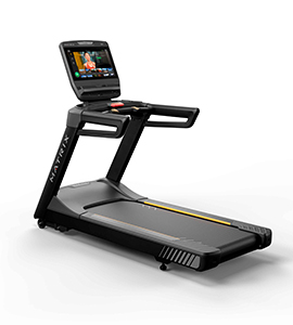 Endurance Treadmill 220V